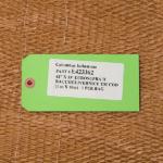 Cartellino - Filtro multistrato raccoglivernice© eurosupra©2