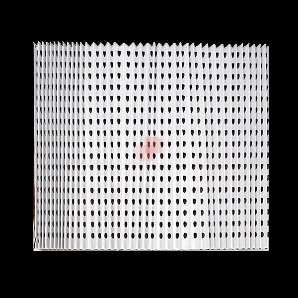 Filtro Andreae Team PGTC-ACC filtro inerziale pieghettato