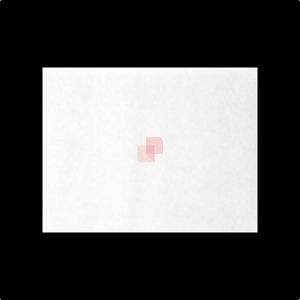 Prefiltro aria in poliestere bianco G4